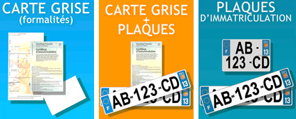 carte grise plaques immatriculation